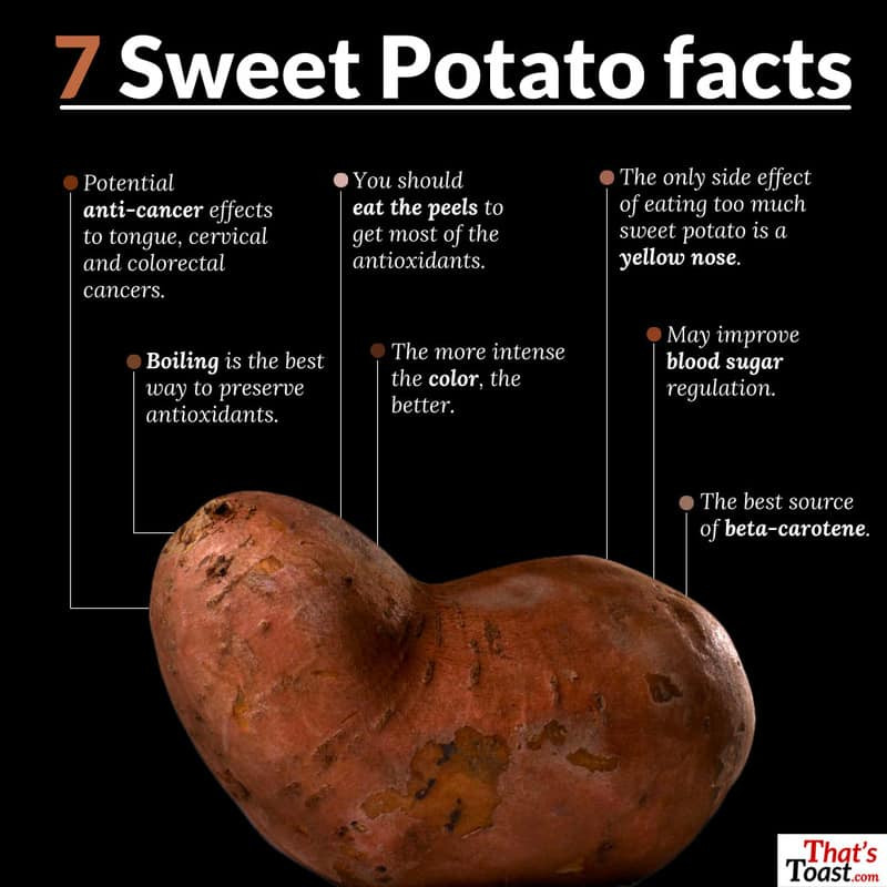 Sweet Potato Nutrition Information  Top mon Prejudices About Can Dogs Eat Sweet Potatoes