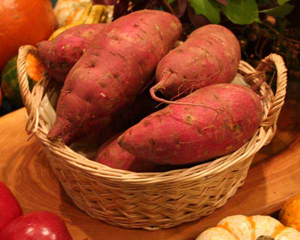 Sweet Potato Varieties  Types of Sweet Potatoes