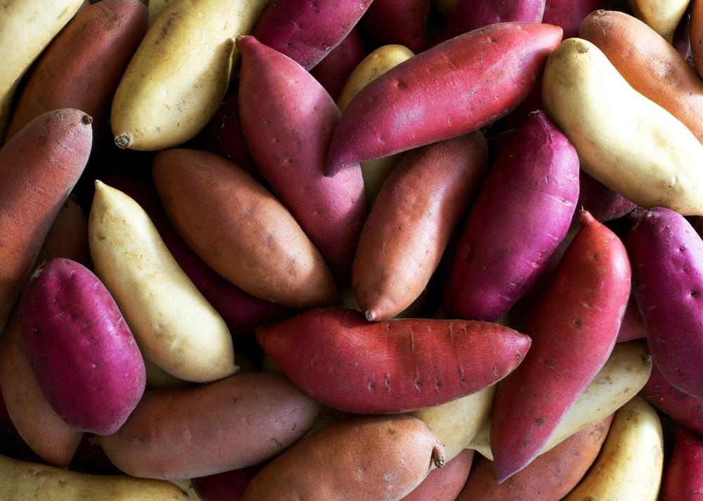 Sweet Potato Varieties  e super food — California Sweetpotatoes