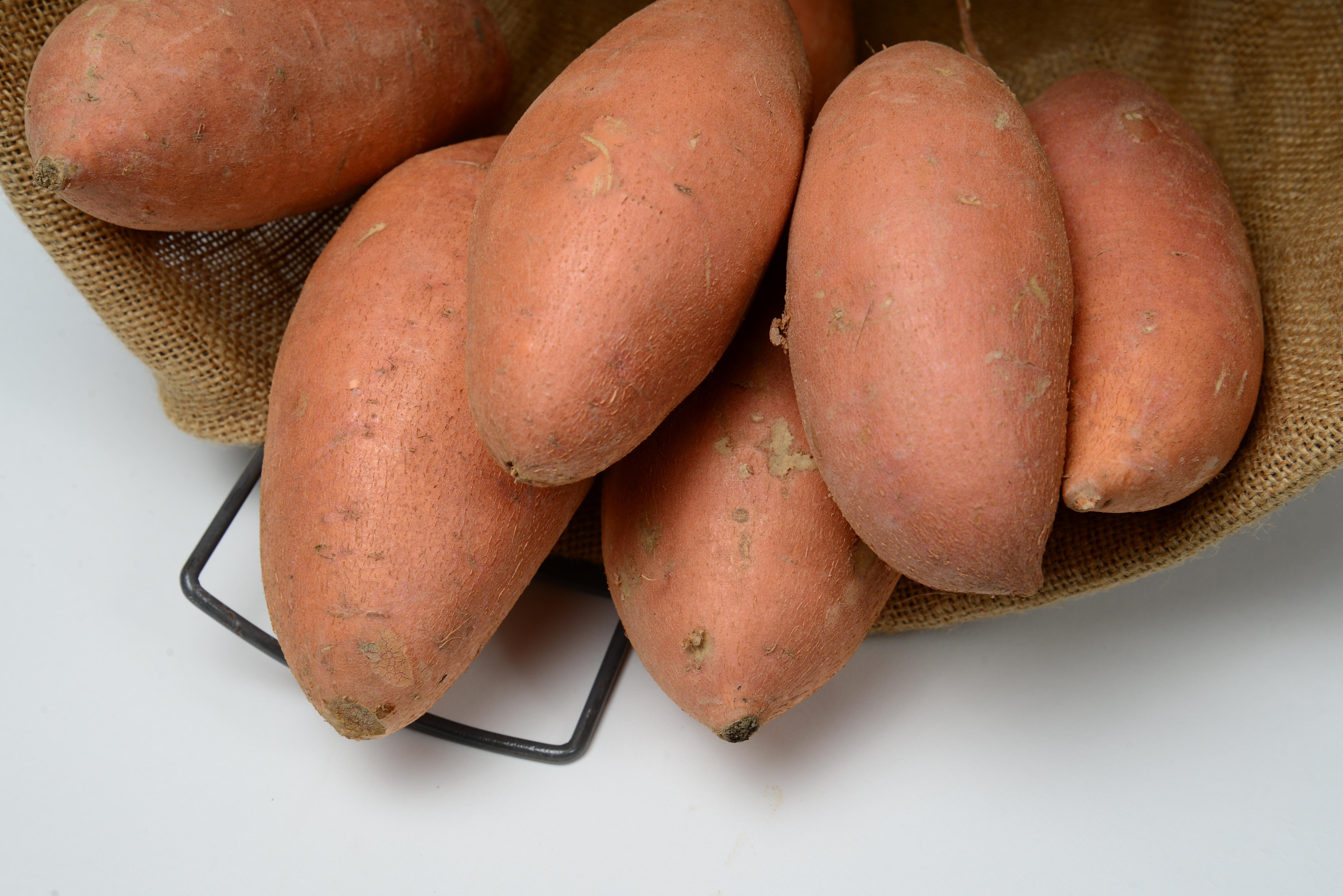Sweet Potato Varieties  Sweet Potato Variety Descriptions