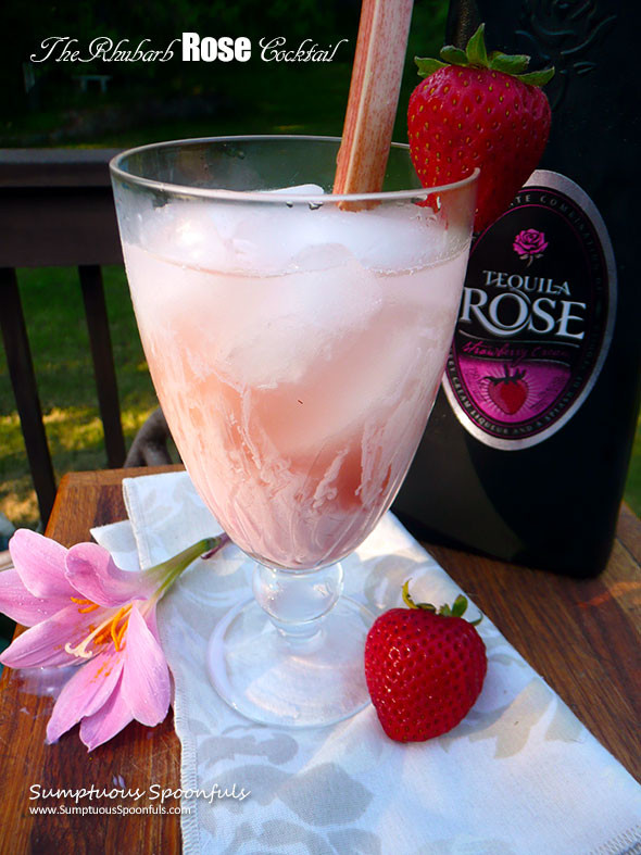 Tequila Rose Drinks  The Rhubarb Rose Cocktail
