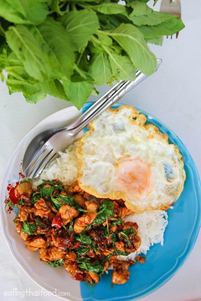 Thai Basil Recipes  Authentic Thai Basil Chicken Recipe ผัดกระเพราไก่