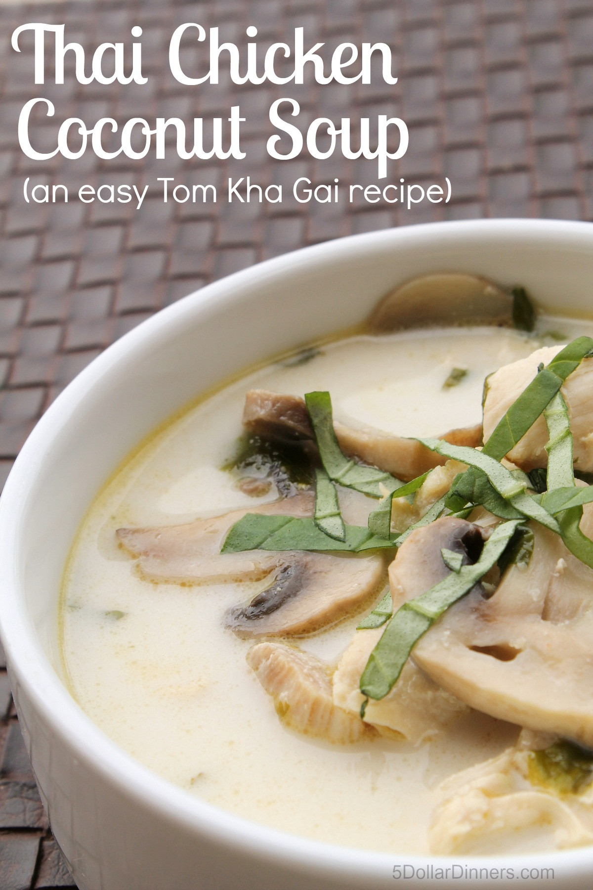 Thai Coconut Soup Recipes  Thai Chicken Coconut Soup Easy Tom Kha Gai