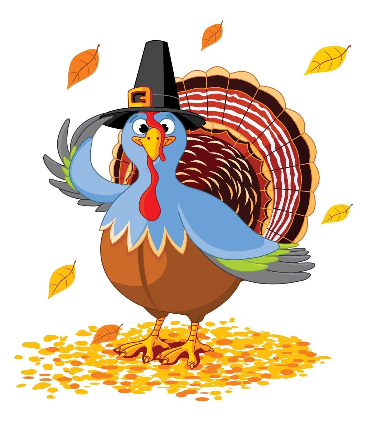 Thanksgiving Turkey Pictures  Carne di tacchino ottimo potere saziante proteine e