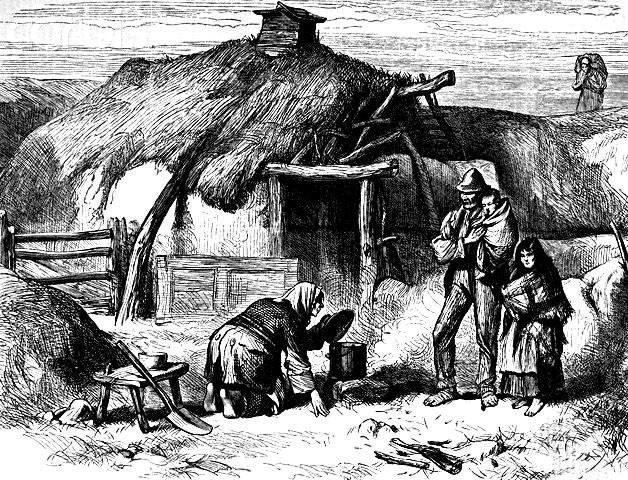 The Potato Famine  The Great Potato Famine 1845 1848