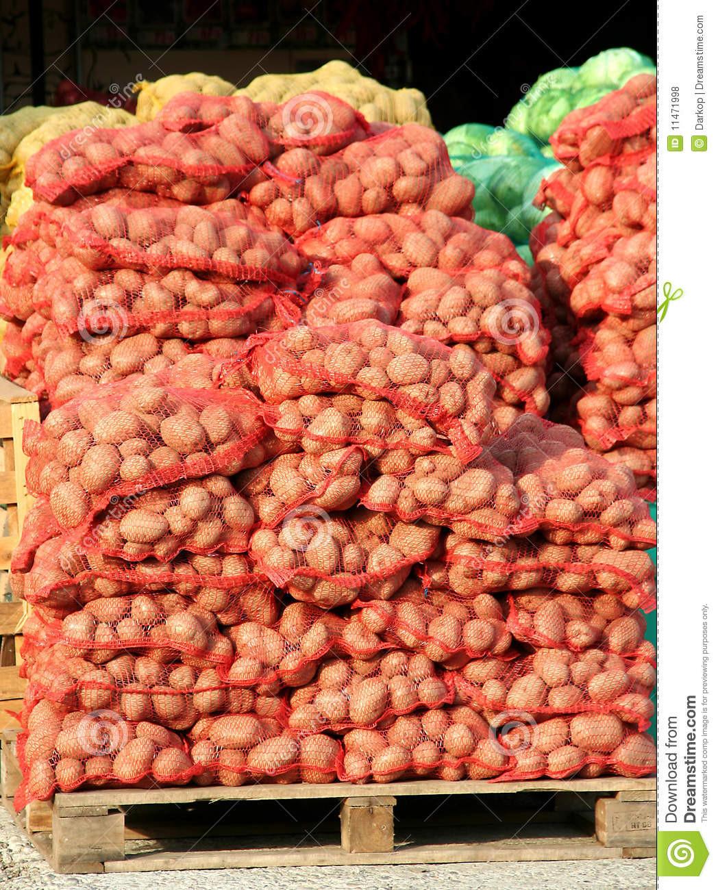 The Potato Place  Potato Royalty Free Stock s Image
