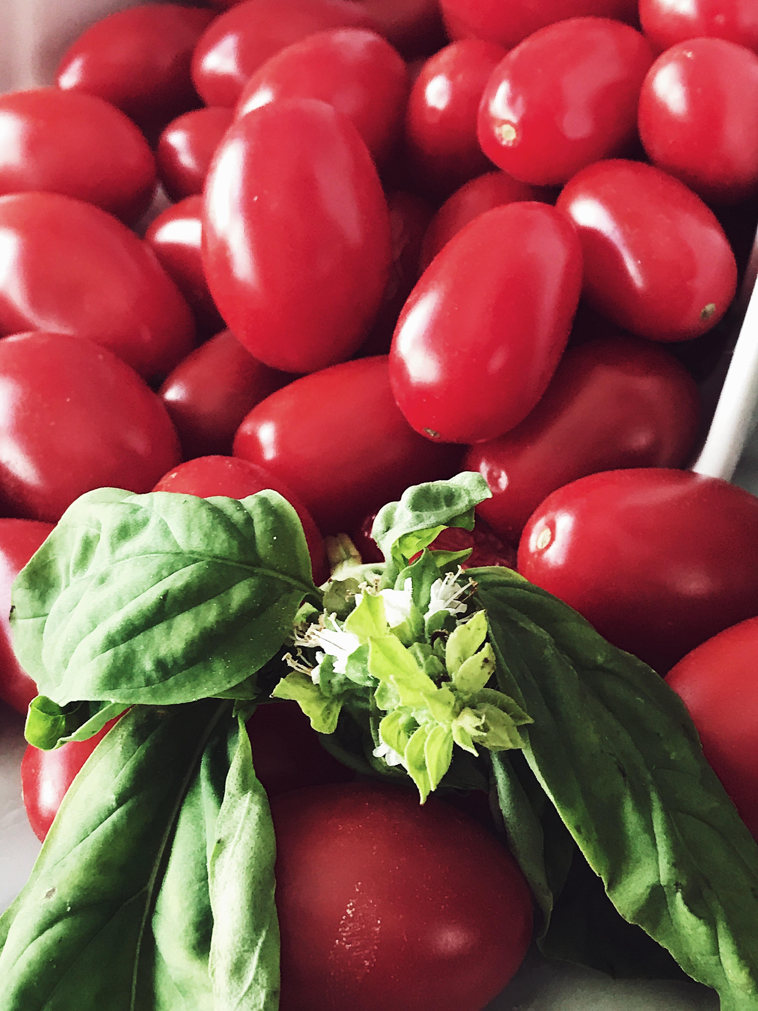 Tomato In Italian  Fresh Tomato Easy Tuna Pasta Recipe