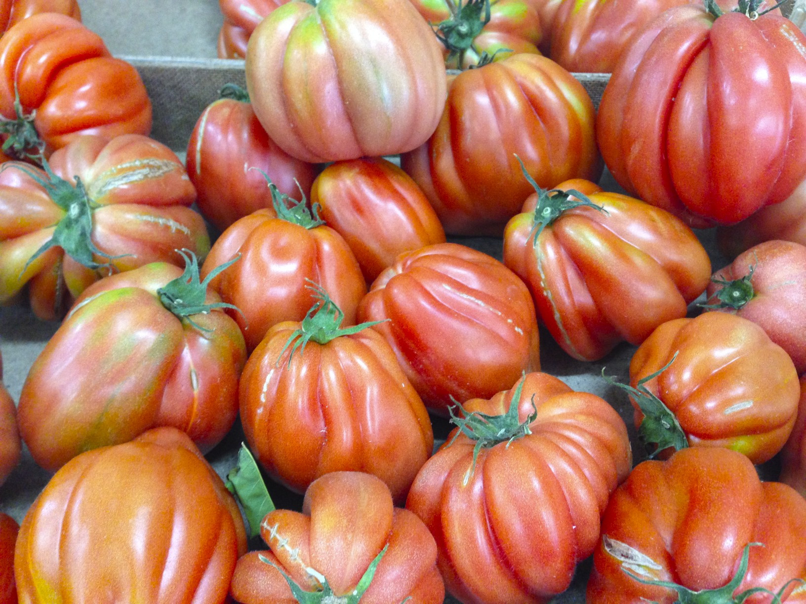 Tomato In Italian  Tomatoes from Southern Italy Sorrento Food Tours