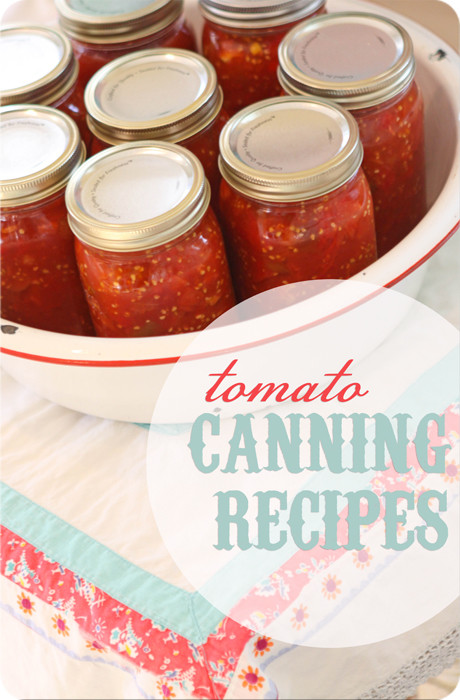 Tomato Sauce Canning Recipe  Recipes for Canning Tomatoes Stewed Tomatoes Pizza Sauce