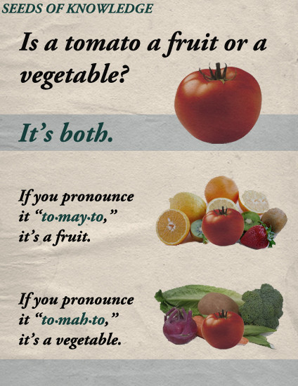 Tomato Vegetable Or Fruit  Fake Science Is A Tomato A Fruit A Ve able