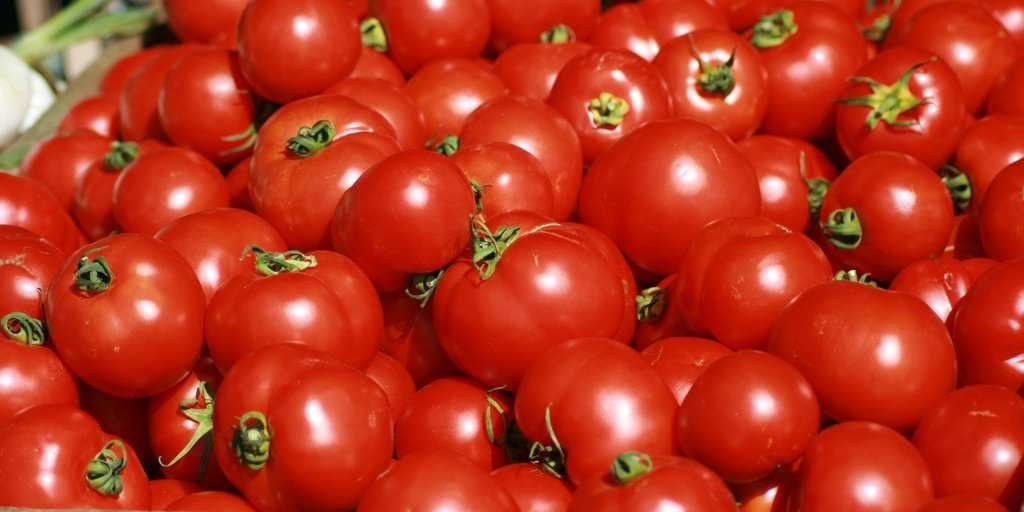 Tomato Vegetable Or Fruit  Supreme Court Tomato Is Ve able Business Insider