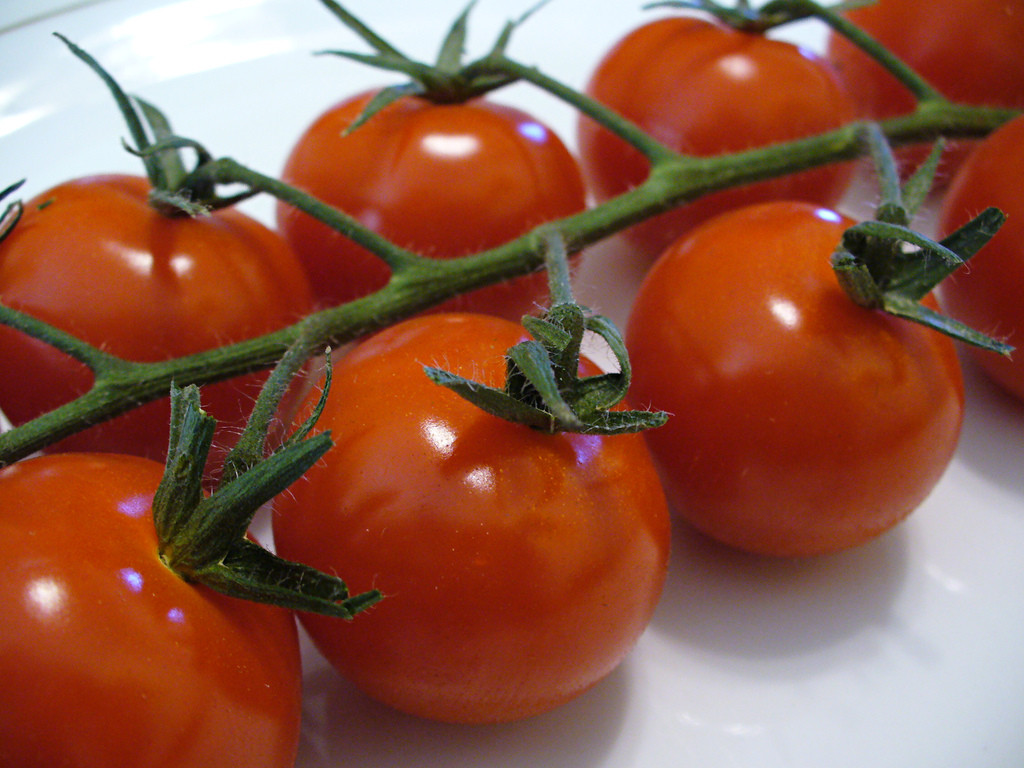 Tomato Vegetable Or Fruit  Cherry Tomatoes Fruit or Ve able C P Storm
