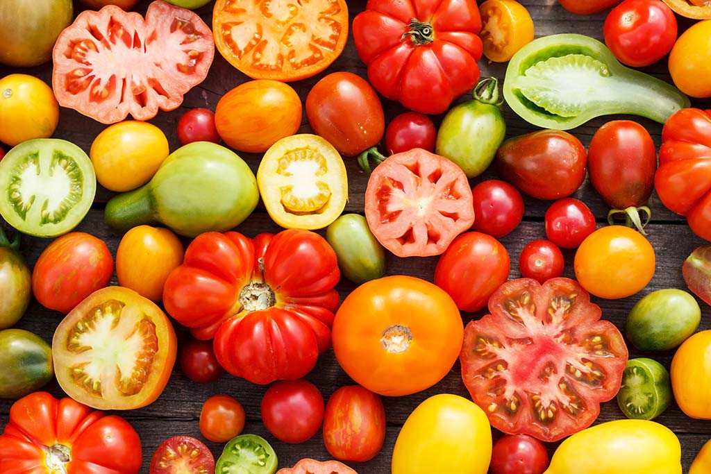 Tomato Vegetable Or Fruit  Is Tomato a Ve able or a Fruit