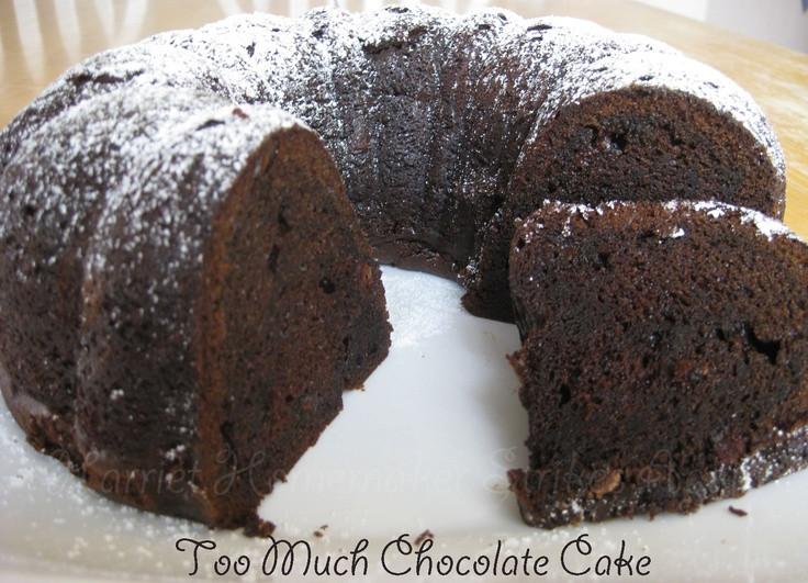 Too Much Chocolate Cake  Too Much Chocolate Cake Recipe — Dishmaps