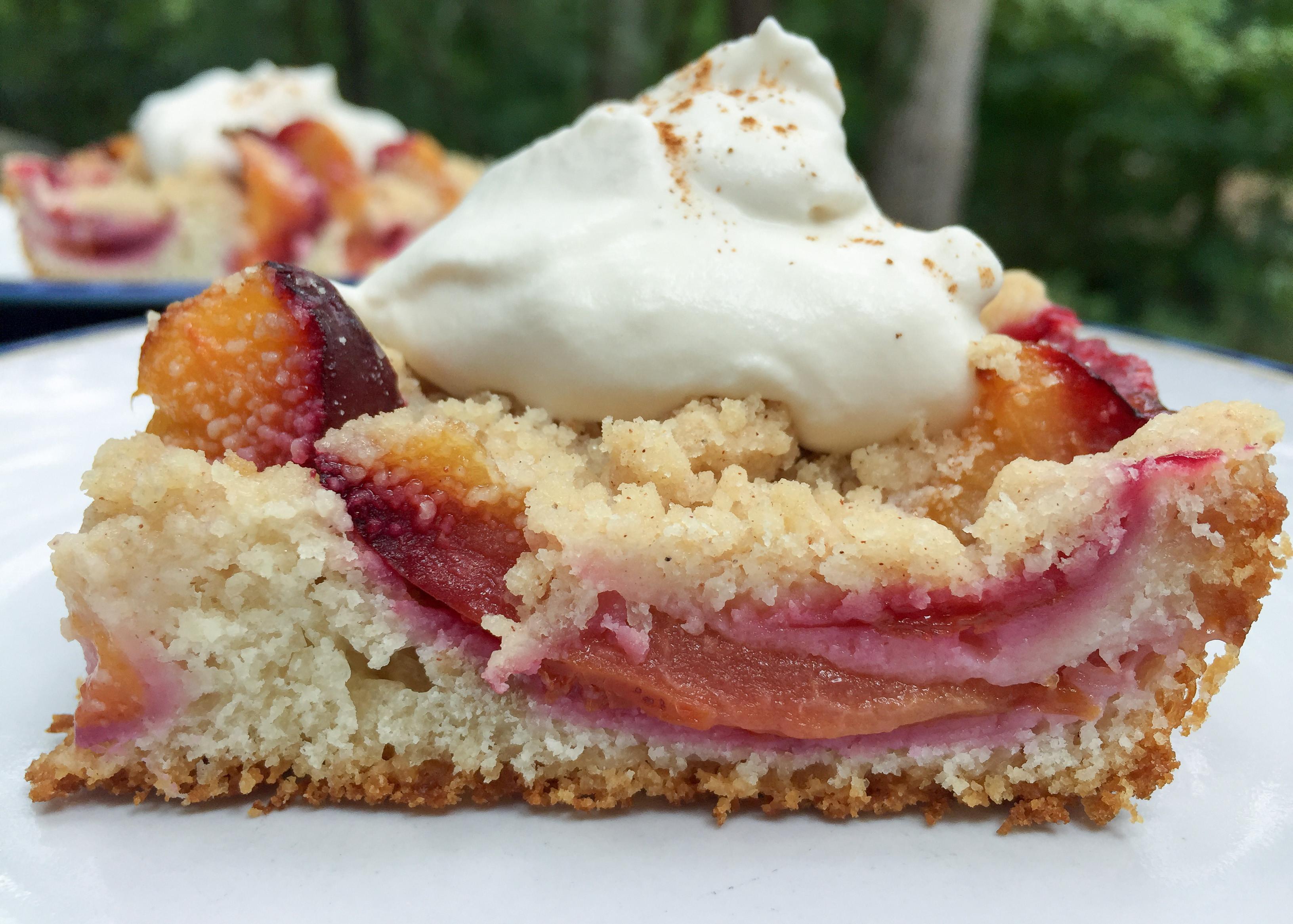 Traditional German Desserts  Easy German Plum Cake International Desserts Blog