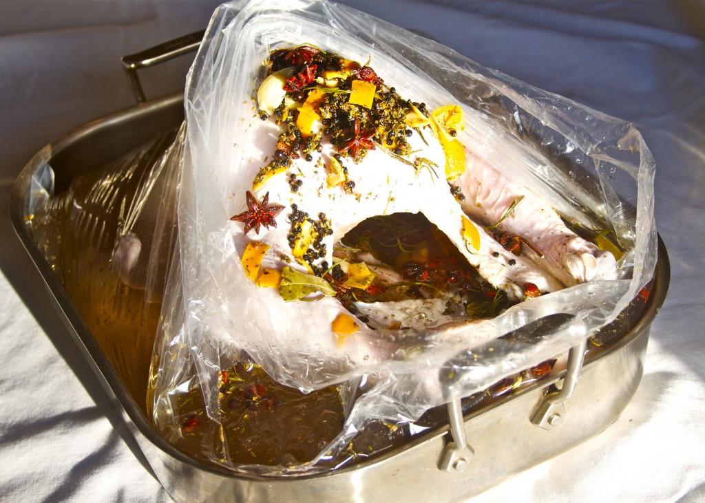Turkey Brine Bag  How to Roast a Brined Turkey Paleo Spirit