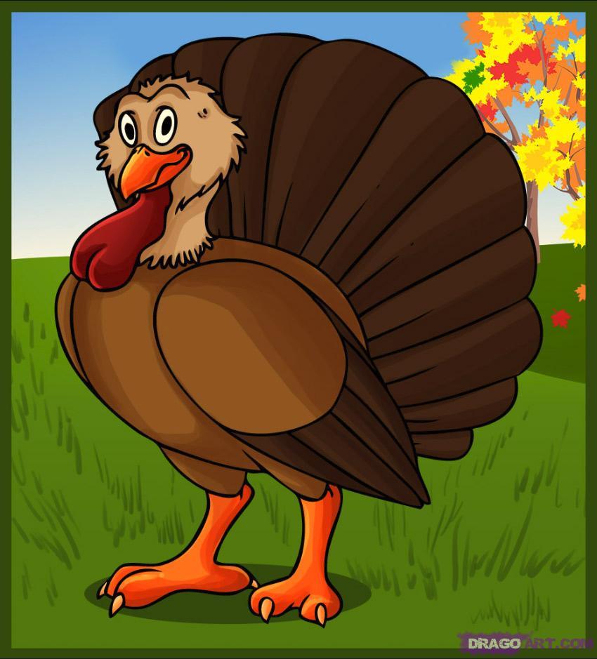 Turkey Thanksgiving Cartoon  How to Draw a Cartoon Turkey Step by Step Cartoon