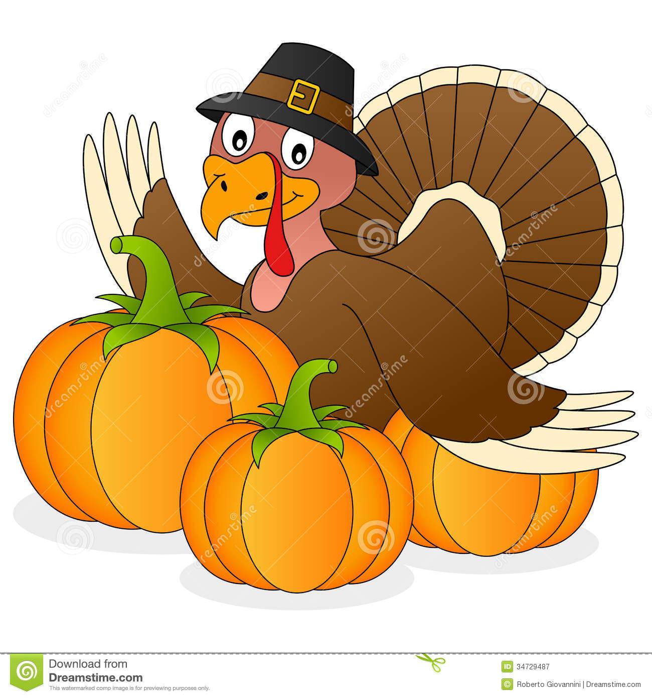 Turkey Thanksgiving Cartoon  Thanksgiving Turkey And Pumpkins Stock Vector