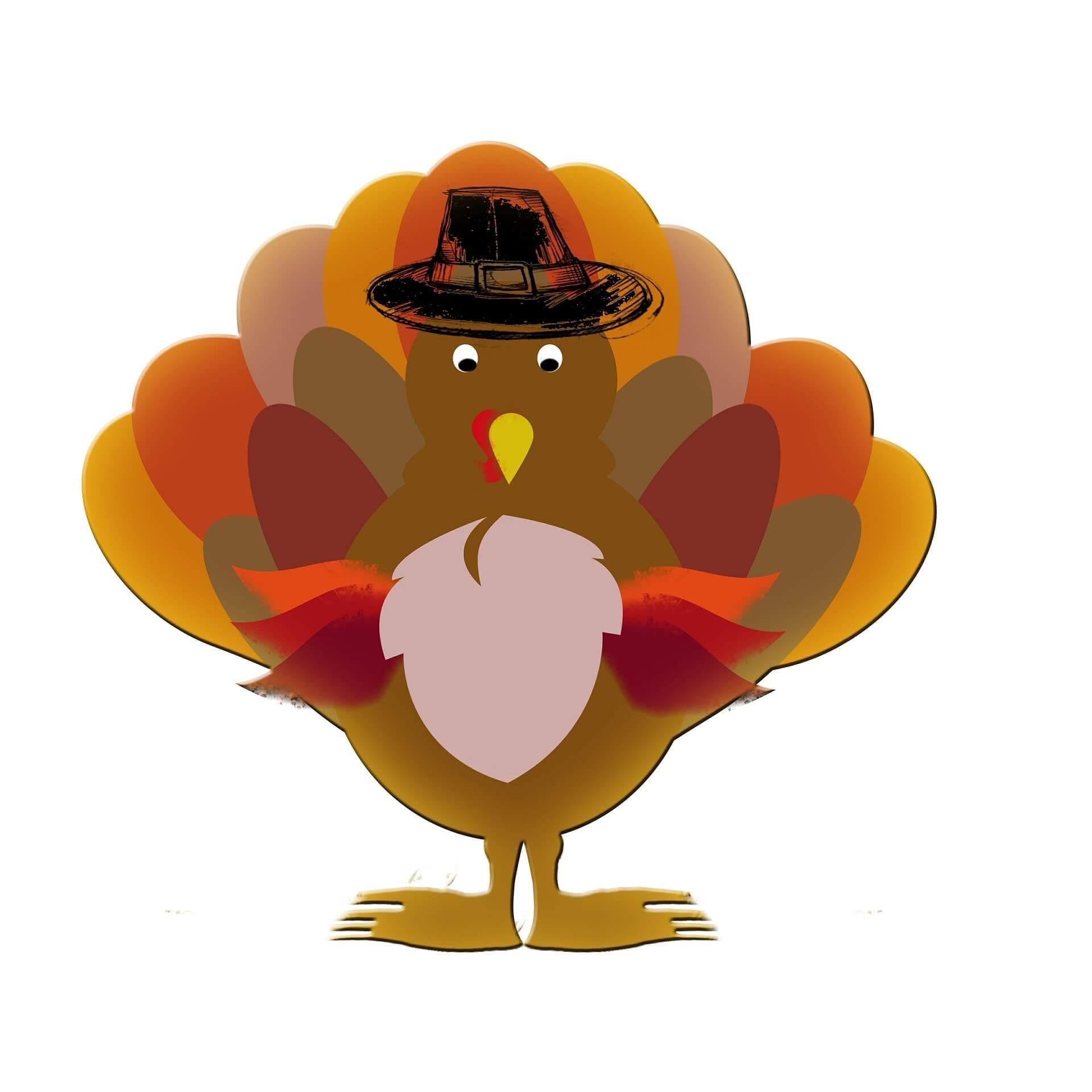 Turkey Thanksgiving Cartoon  Give Thanks A Thanksgiving for Turkeys Vegaprocity
