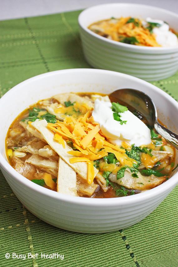 Turkey Tortilla Soup  Healthy Turkey Tortilla Soup Busy But Healthy