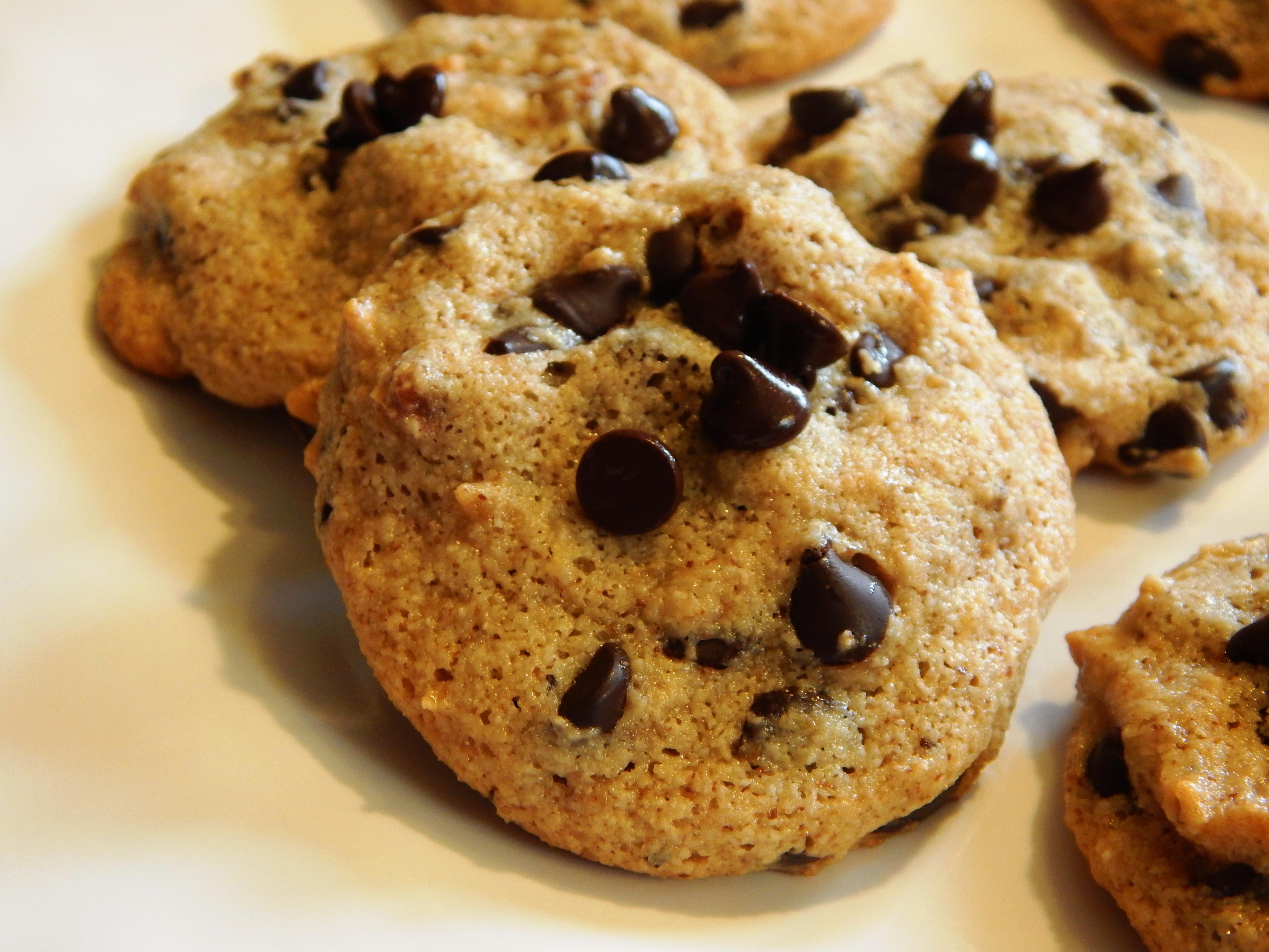 Ultimate Chocolate Chip Cookies  Ultimate Grain Free Chocolate Chip Pecan Cookies