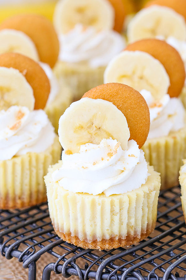 Vanilla Wafer Dessert  Mini Banana Pudding Cheesecakes Life Love and Sugar