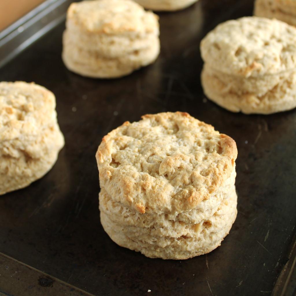 Vegan Biscuit Recipe  Fluffy Biscuits Vegan Style Vegan Yumminess