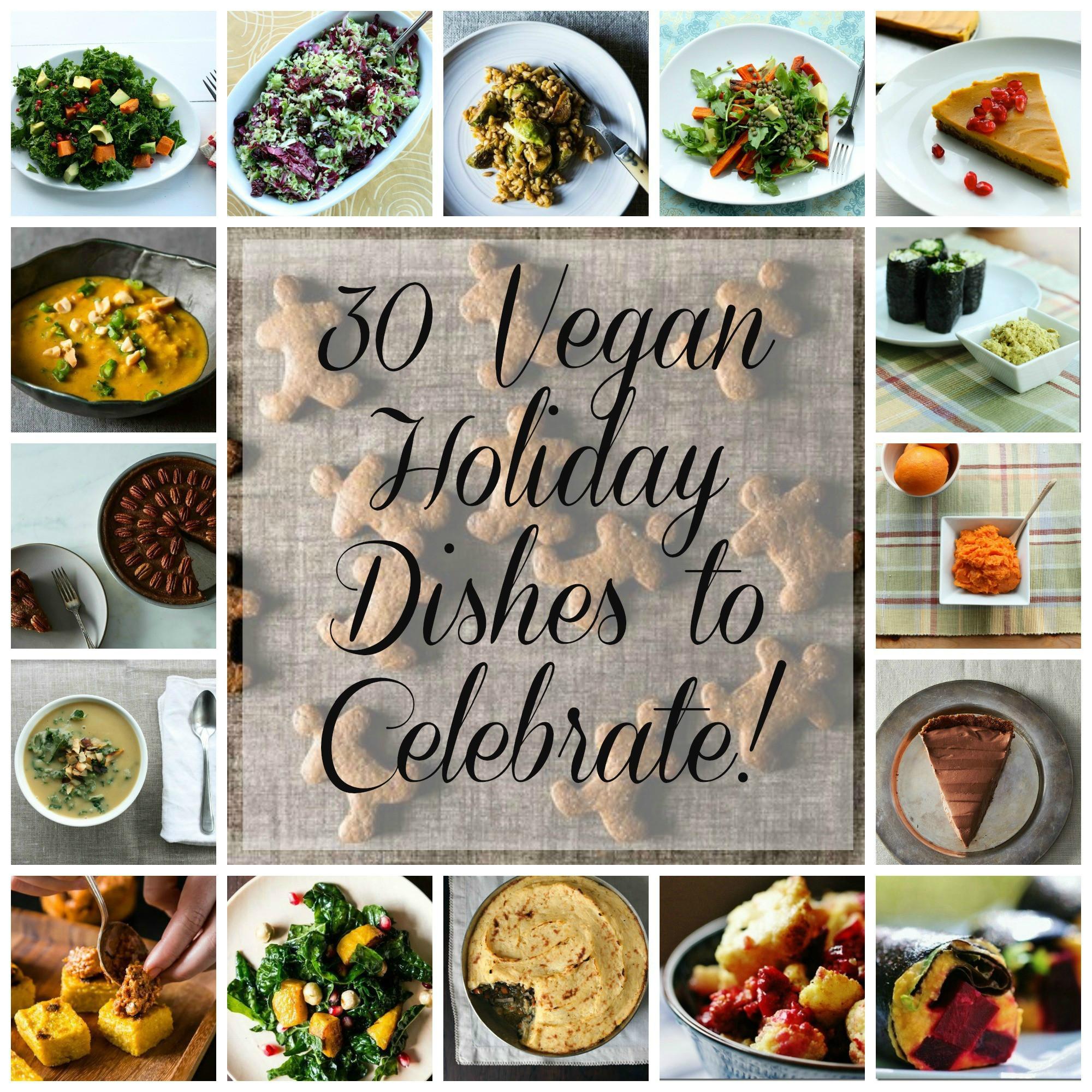 Vegan Holiday Recipes  2013 Vegan Holiday Recipe Round Up 30 Appetizers Salads