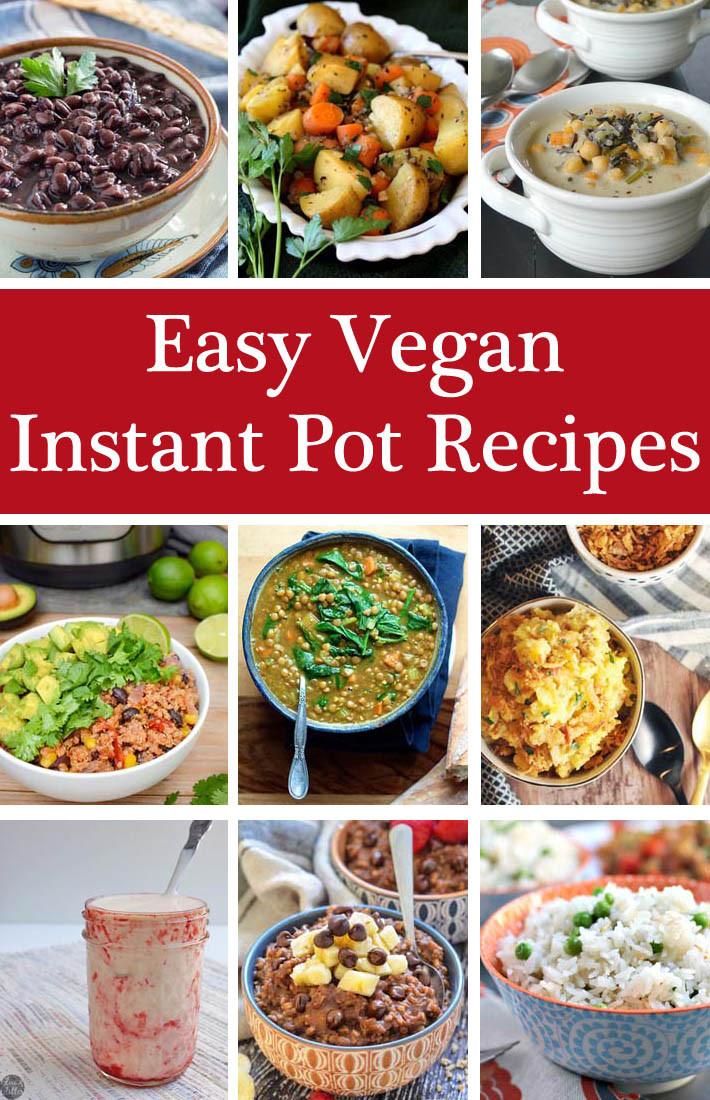 Vegan Instant Pot Recipes  Easy Instant Pot Vegan Recipes Delightful Adventures