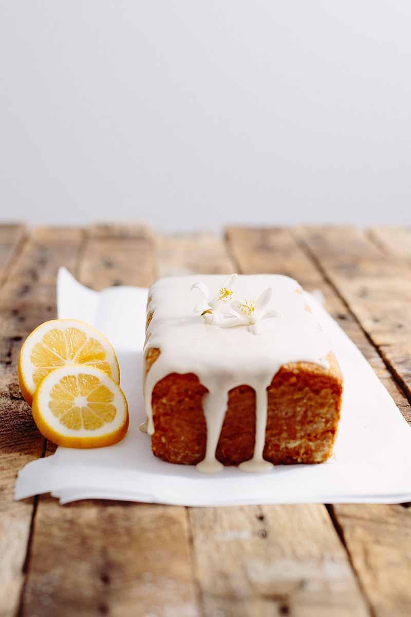 Vegan Pound Cake  Vegan Lemon Pound Cake