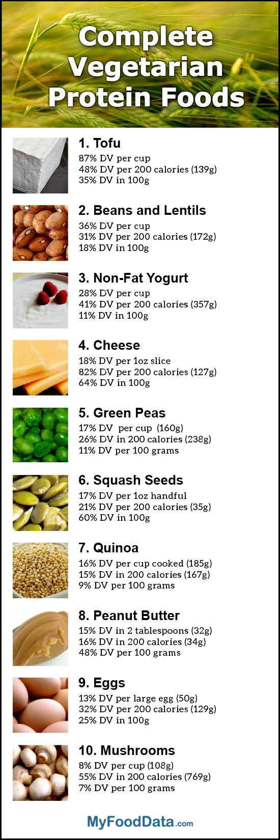 Vegetarian Foods High In Protein  Top 10 plete Ve arian Protein Foods with All the