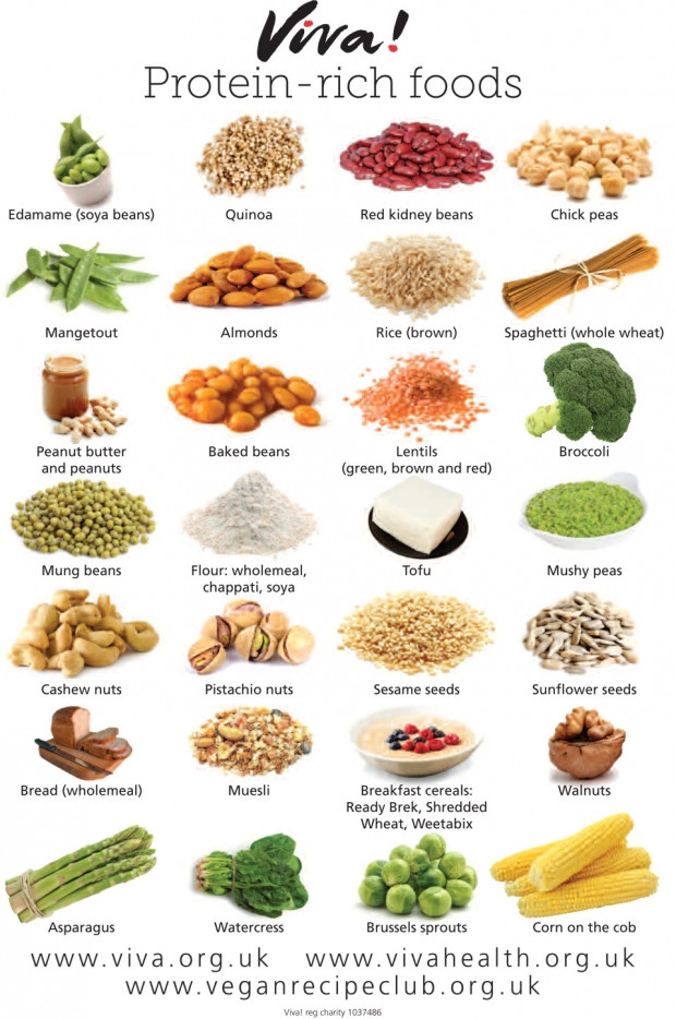 Vegetarian Foods High In Protein  VEGAN PROTEIN RICH FOODS — Forking Fit