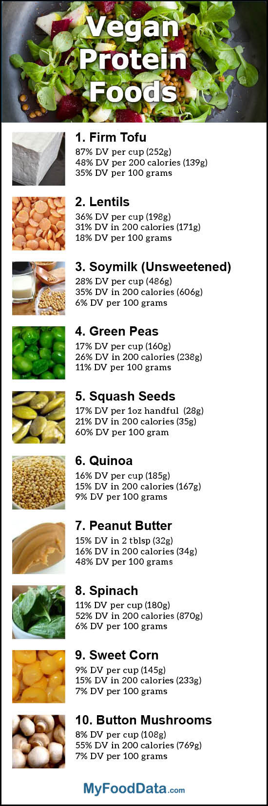 Vegetarian Foods High In Protein  Top 10 Vegan Sources of Protein