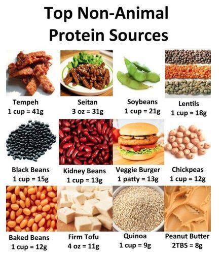 Vegetarian Foods High In Protein  Vegan Protein Options