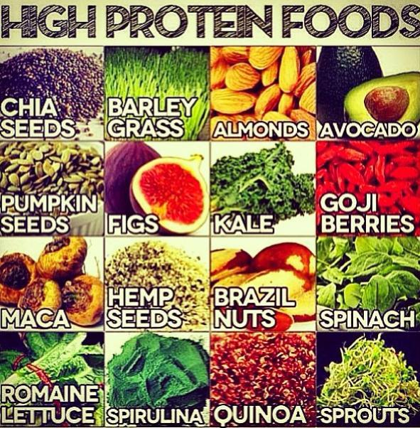 Vegetarian Foods High In Protein  Best High Protein Food