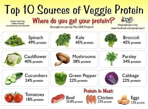 Vegetarian Foods High In Protein  What ve arian foods are high in protein Quora