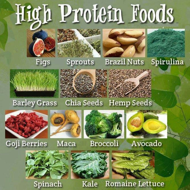 Vegetarian Foods High In Protein  Diet for Healthy Nails 101