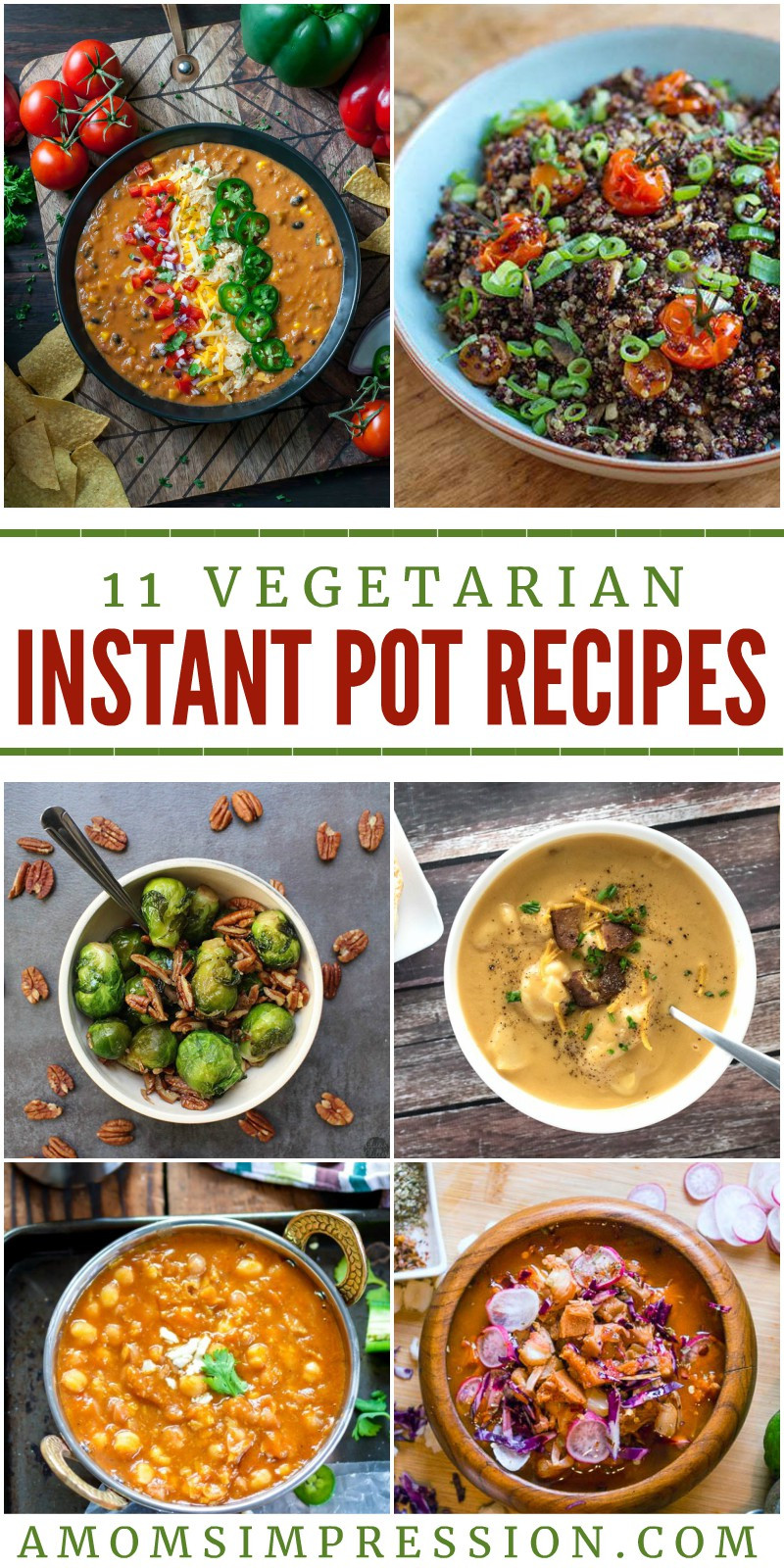 Vegetarian Instant Pot Recipes  11 Exciting Ve arian Instant Pot Recipes Everyone will Love