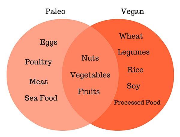 Vegetarian Paleo Diet  Paleo vs Vegan – Die Vor und Nachteile – Balance pH