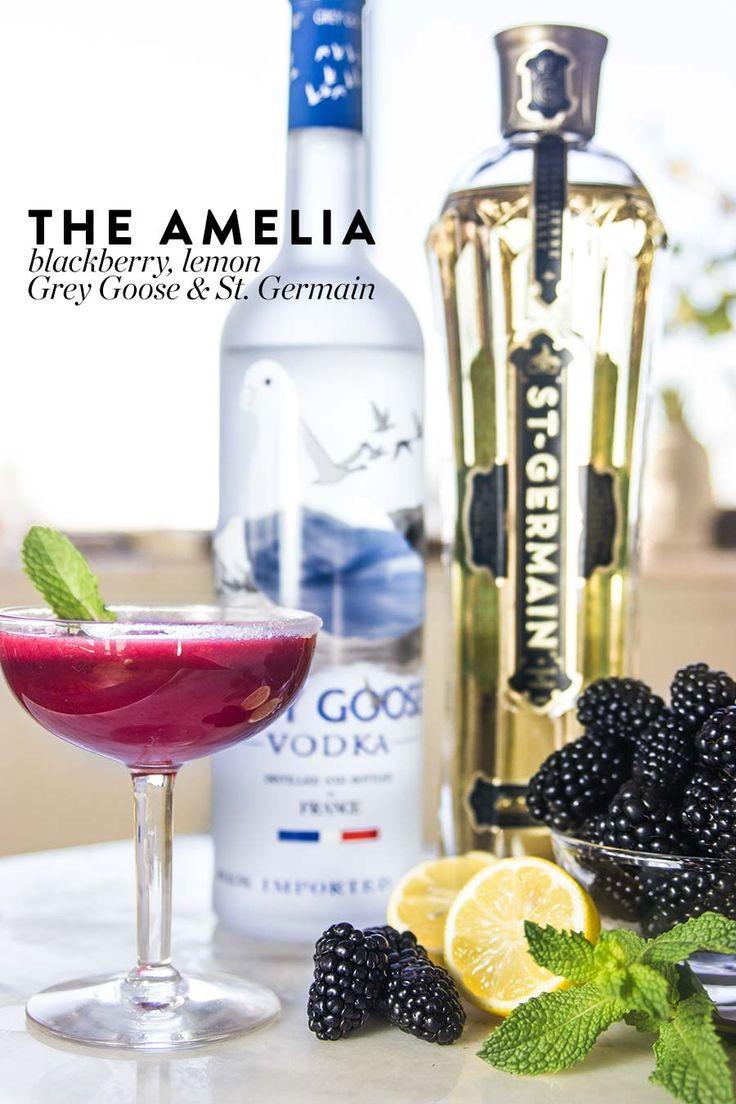 Vodka Drinks Mixers  grey goose vodka mixed drinks