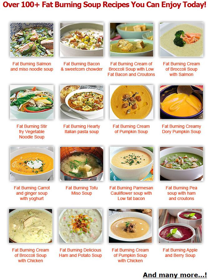 Weight Loss Foods Recipes  Weight Loss Shake Recipes protein for women how weight
