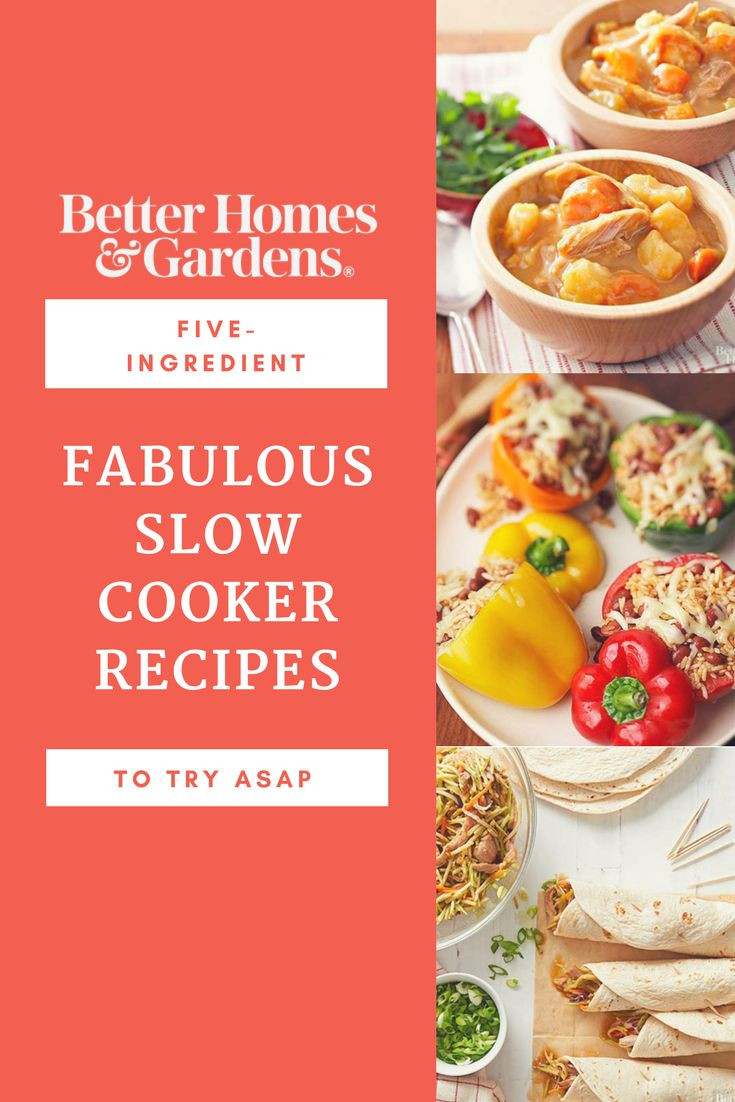 What Can I Make For Dinner With These Ingredients  696 best Delicious Slow Cooker Dishes images on Pinterest