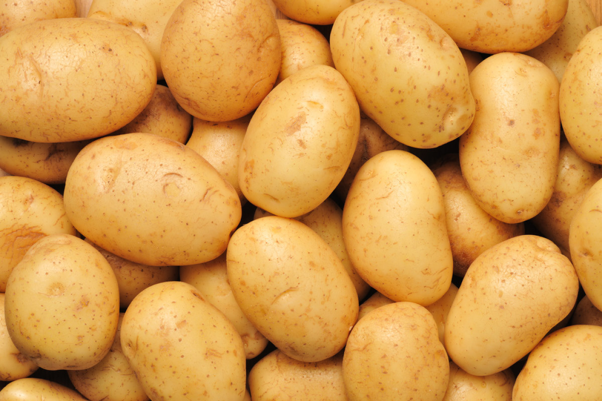 What Is A Potato  Spelling potato potatoe