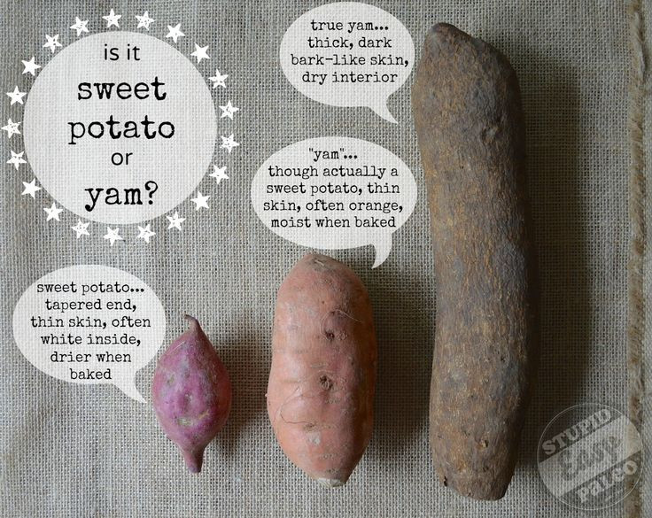 What'S The Difference Between A Sweet Potato And A Yam  Best 25 Yams vs sweet potatoes ideas on Pinterest