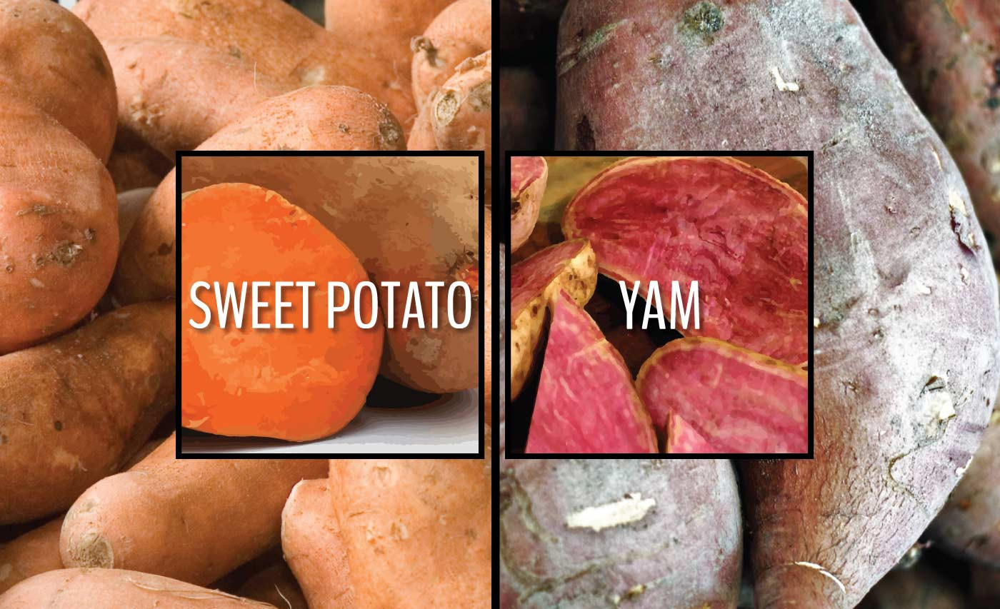 What'S The Difference Between A Sweet Potato And A Yam  Sweet potatoes or yams Learn the difference right now