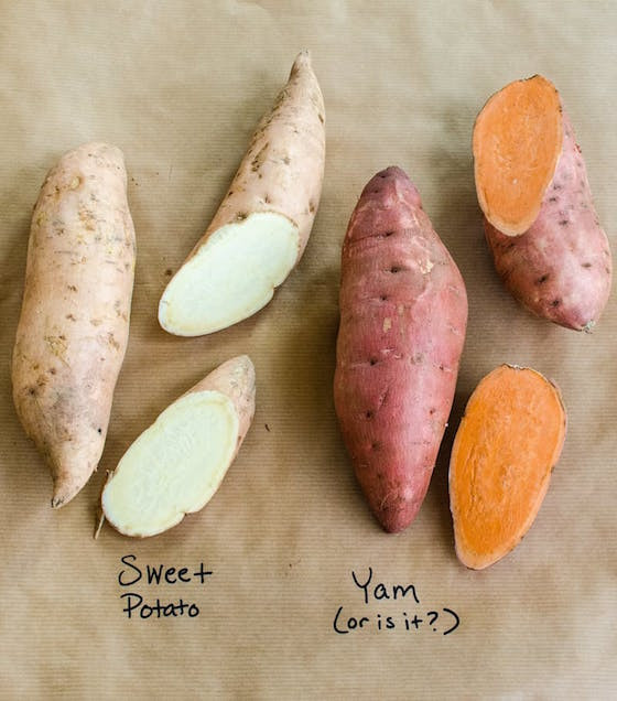 What'S The Difference Between A Sweet Potato And A Yam  OMG Worthy Reads Week 107 OMG Lifestyle Blog