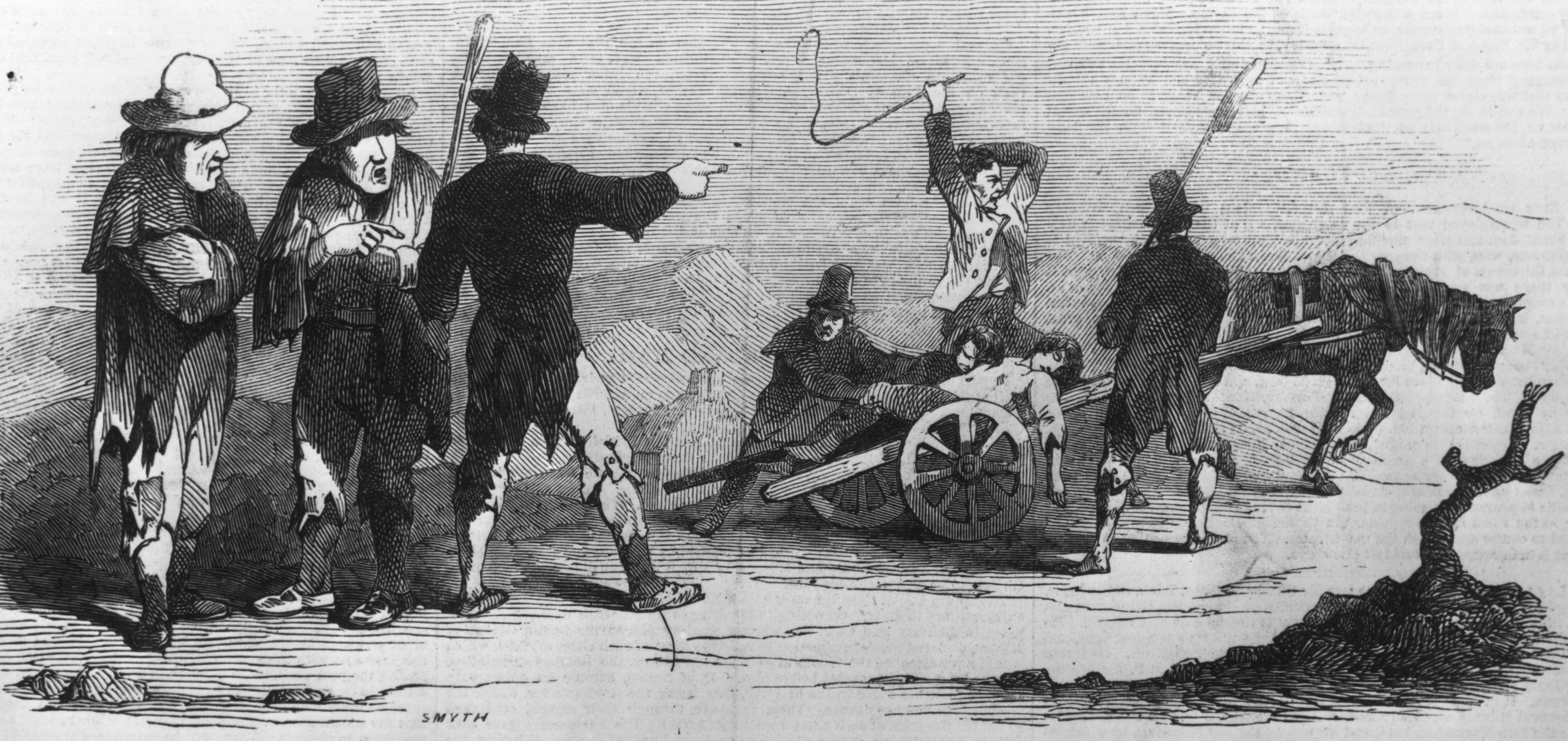 When Was The Potato Famine  When America Despised the Irish The 19th Century's