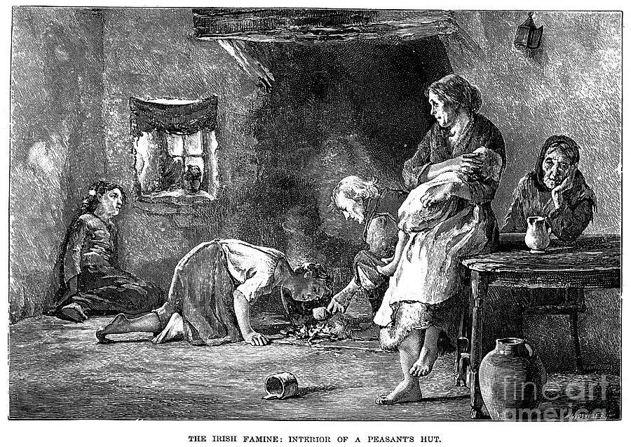 When Was The Potato Famine  Irish Potato Famine 1846 7 graph by Granger