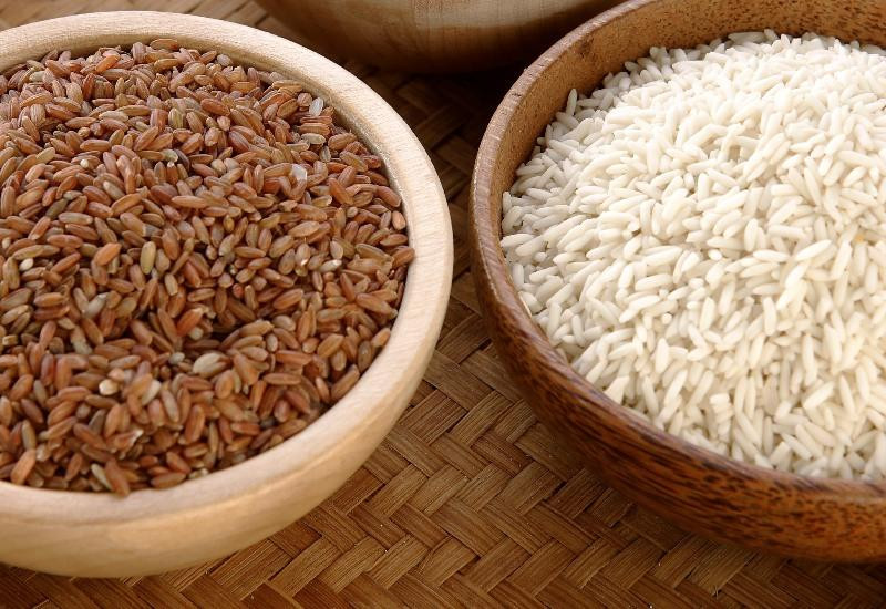 White Or Brown Rice  Should You Eat White Rice or Brown Rice Never Fear Failure