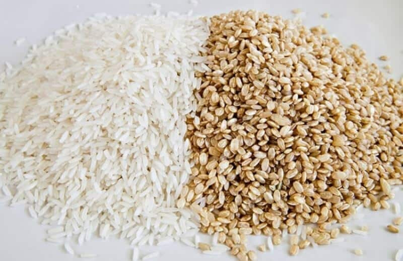 White Rice Or Brown Rice  Brown Rice vs White rice Which is better